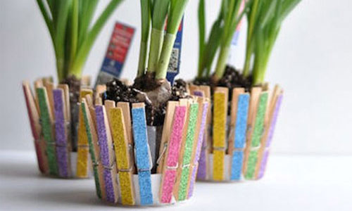 Idea for home flowerpot from clothespins