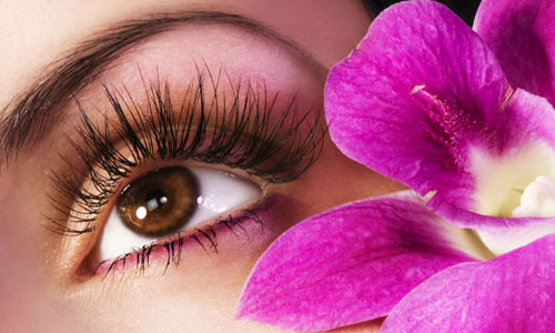 recipes for dense and pretty lashes